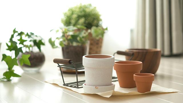 植木鉢の下取りやリセールはできる?